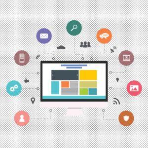 Userex - Bindura Digital Marketing Company